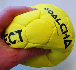 Goalcha-Ball